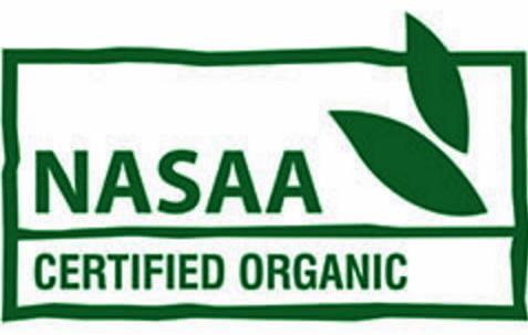 NASSA logo