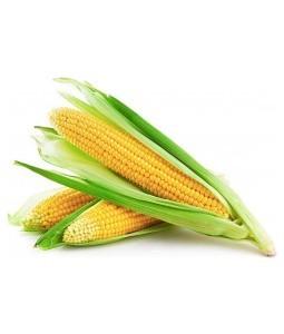 Organic Corn