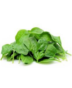 Organic Spinach 1.5kg